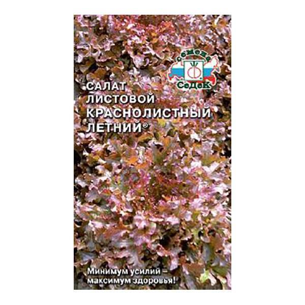 Салат листовой краснолистный летний